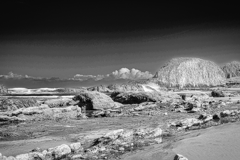 """Seal Rock BW"""