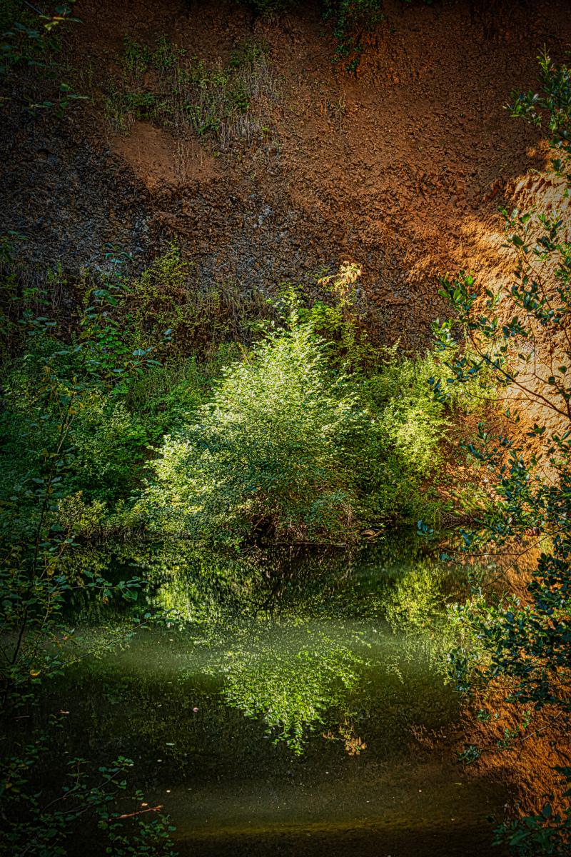 """Tailing Pond"""