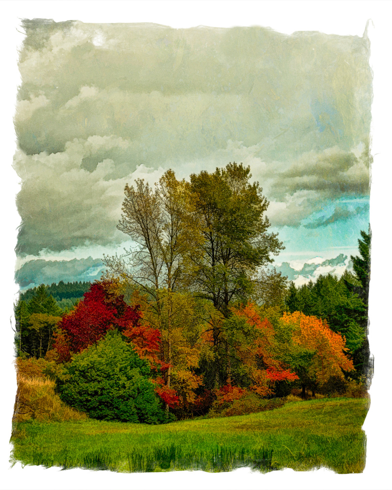 """Lower Circle Trail, Painterly"""