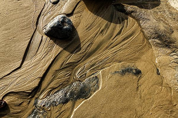 """Beach Art"""