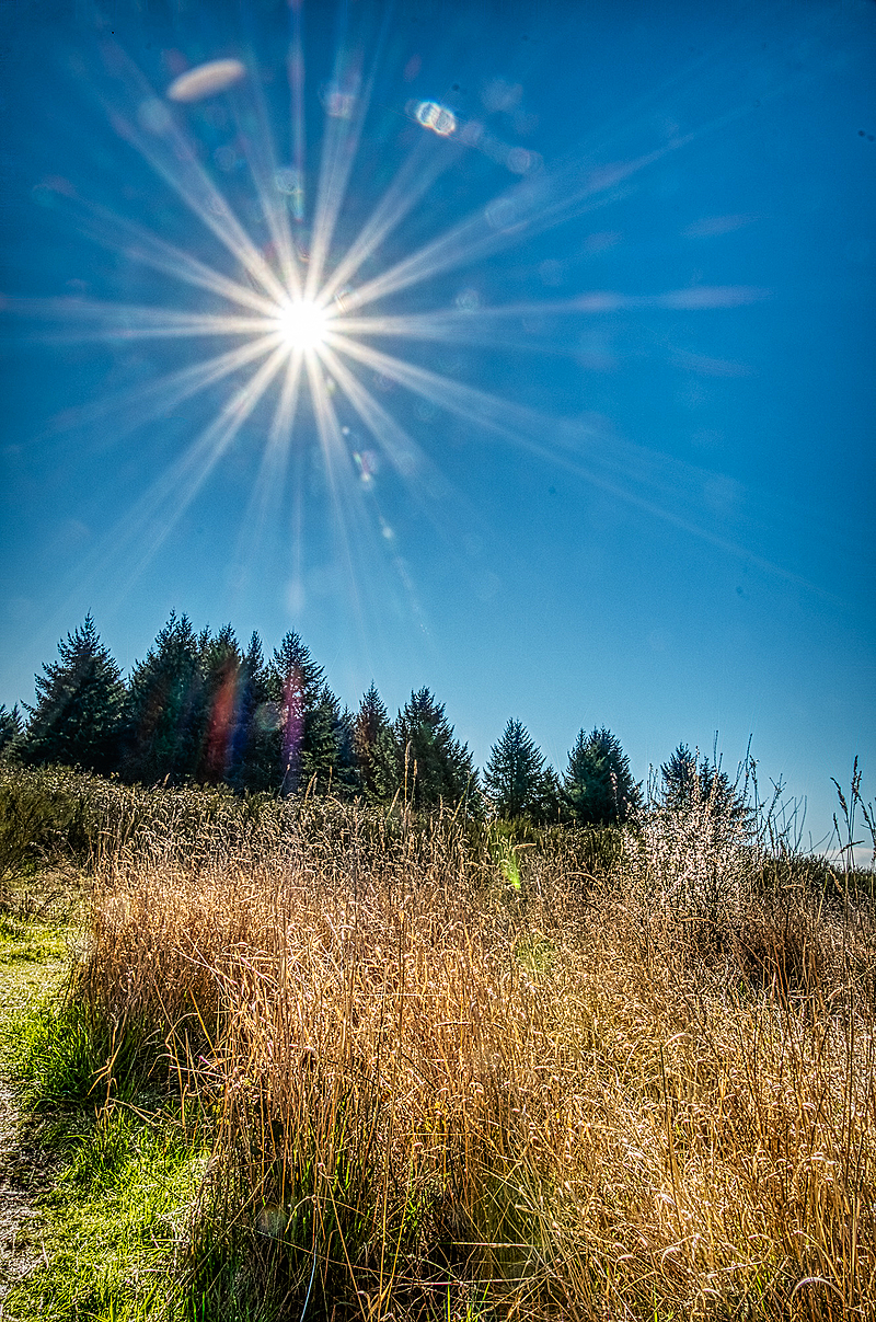 """Sunburst Over Shooting Star Ridge"""