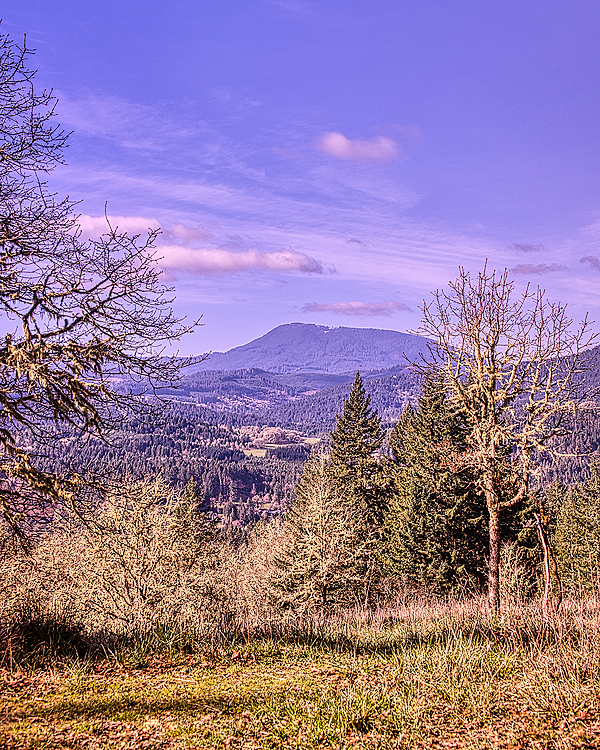 """Blue Gold-N-Blue Polarizer Version of Marys Peak"""