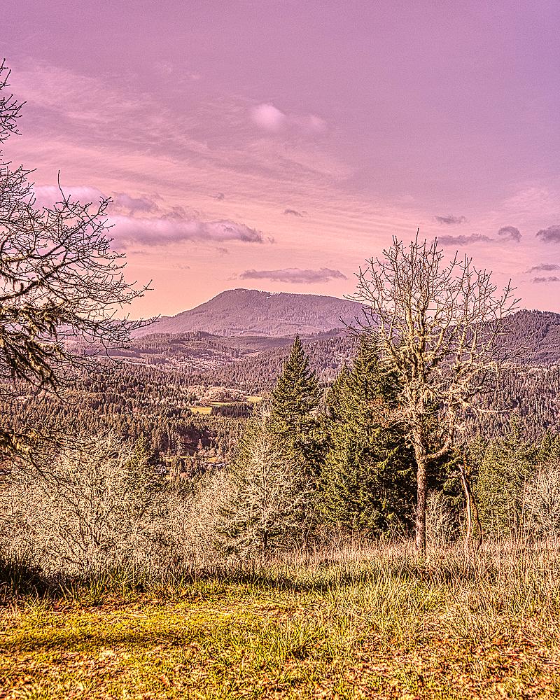 """Gold Gold-N-Blue Polarizer Version of Marys Peak"""