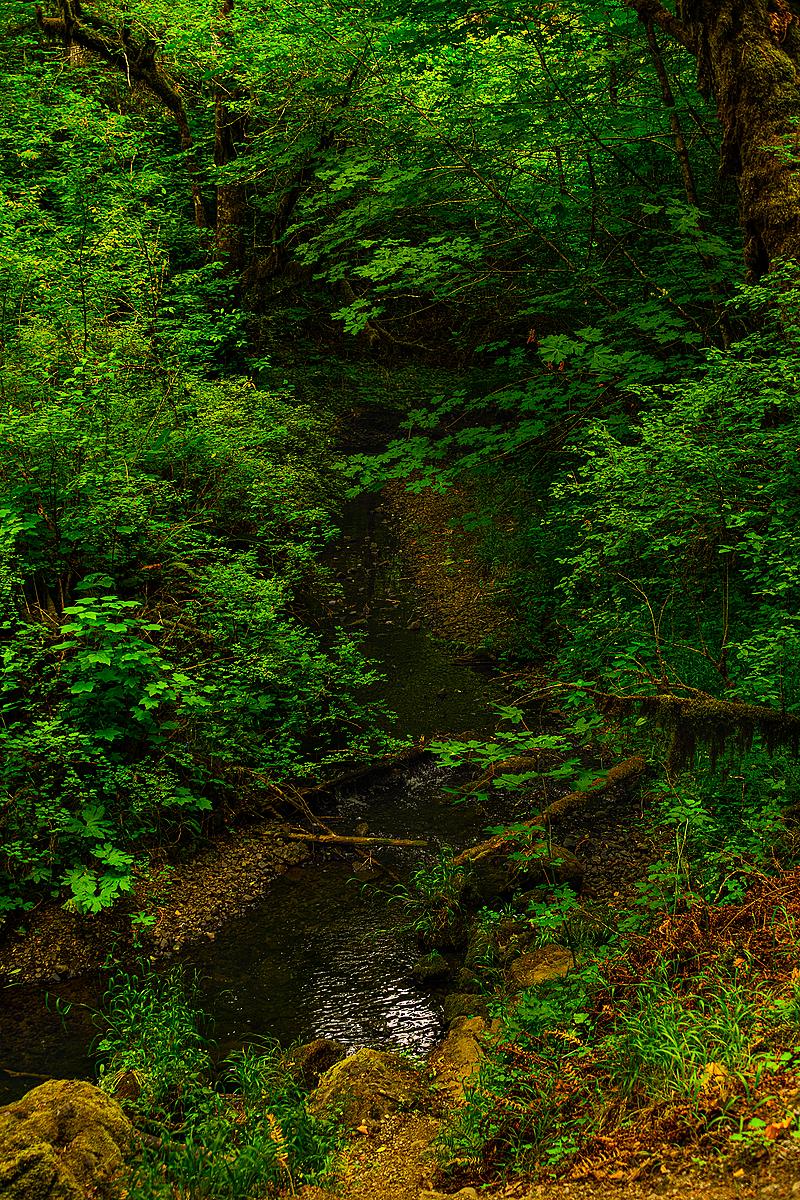 """""""Oak Creek"""""""