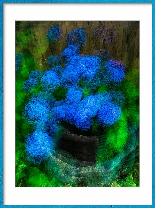 """Impressionistic Hydrangeas"""