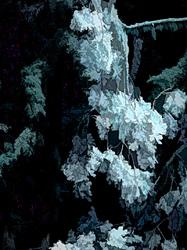 """Dead Leaves#2, Silver Selenium Tone;PainterlyL&I"