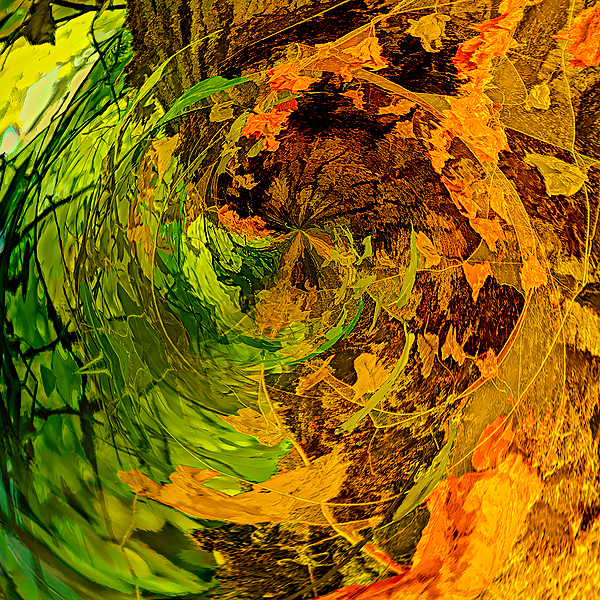 """""""Abstract Version of Dead Leaves, Painterly"""""""