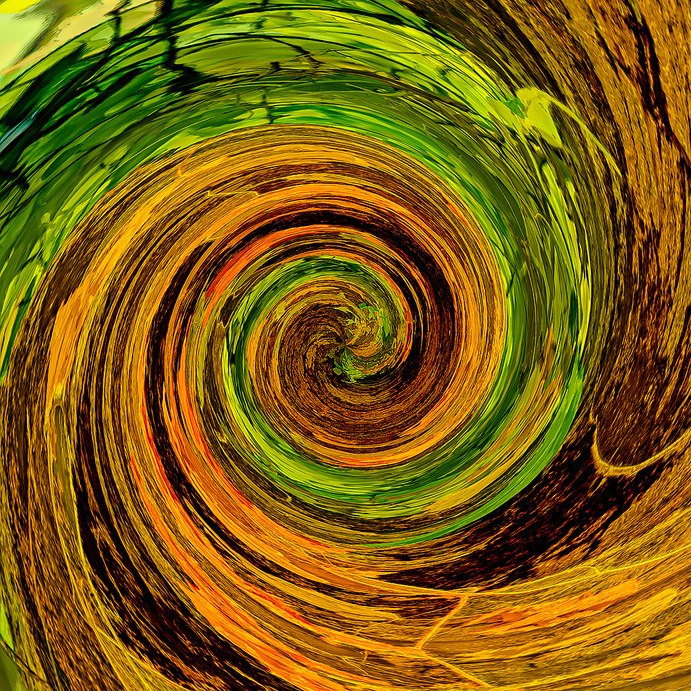 """Twirl Abstract of Dead Leaves"""