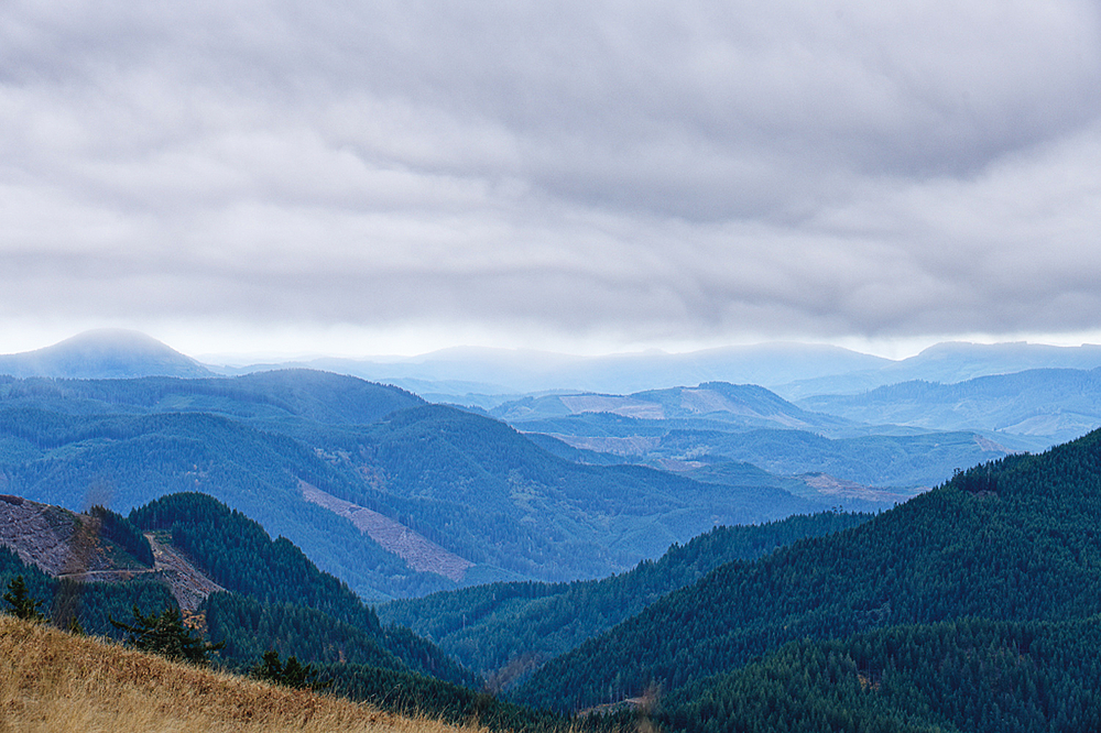 """View From Marys Peak, 10/23"""