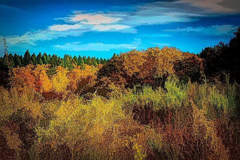 """""""Autumn Scene. Painterly"""""""
