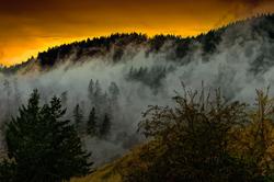"""Clouds Thru Mountain Trees"""