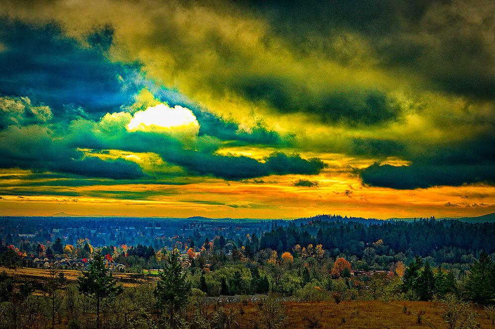 """Corvallis (from the Timberhill Natural Area)"""