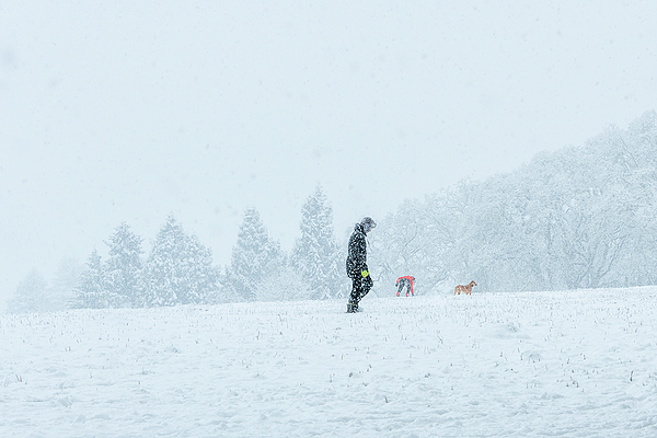 """""""Snow Play in the Park"""""""