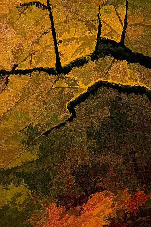 """Wabi Limbs, Abstract"""