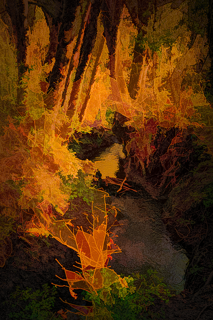 """""""Shooting Star Creek, Abstract"""""""