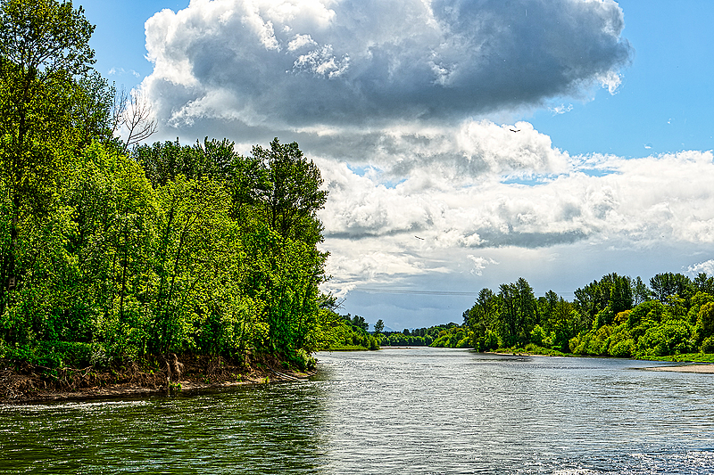"""""""Looking Up the Willamette River"""""""