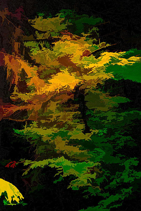 """""""Lush Growth Abstract"""""""