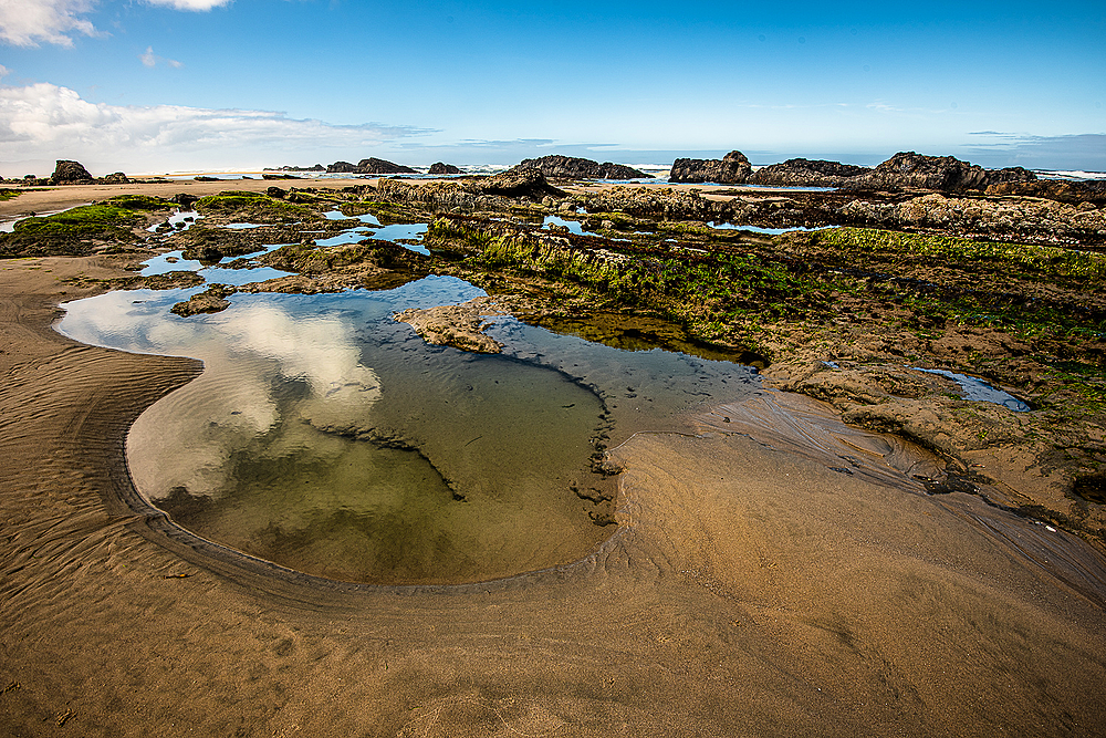 """""""Wide Angle TidePools & Reflections"""""""