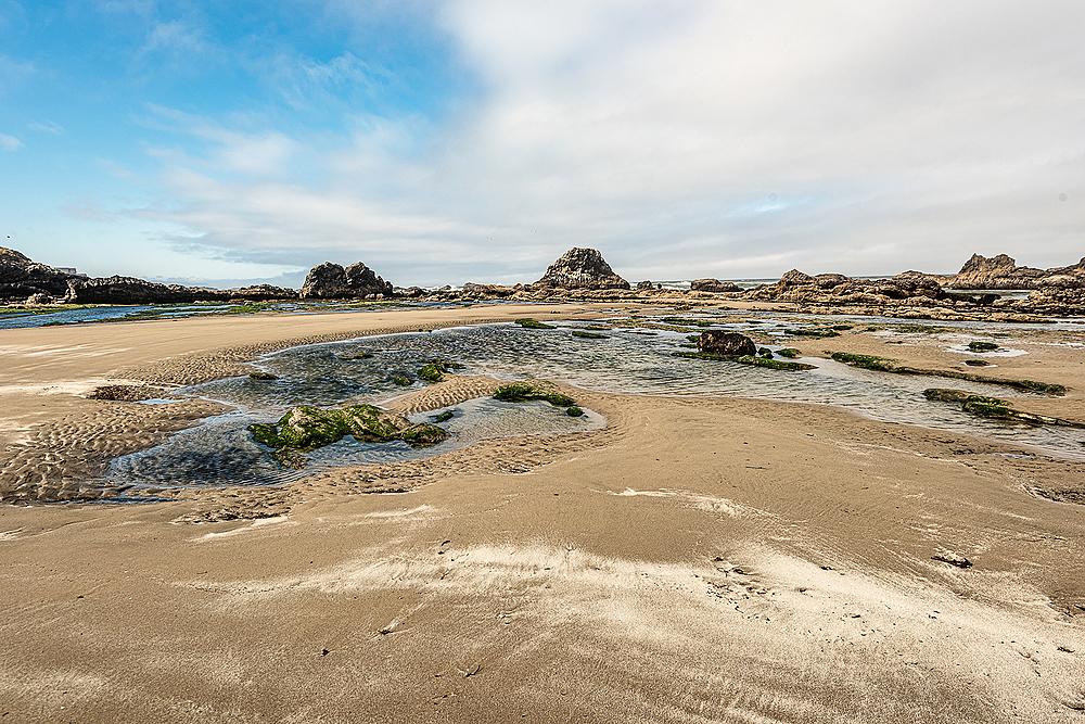 """""""Seal Rock Beach (Low Tide)"""""""