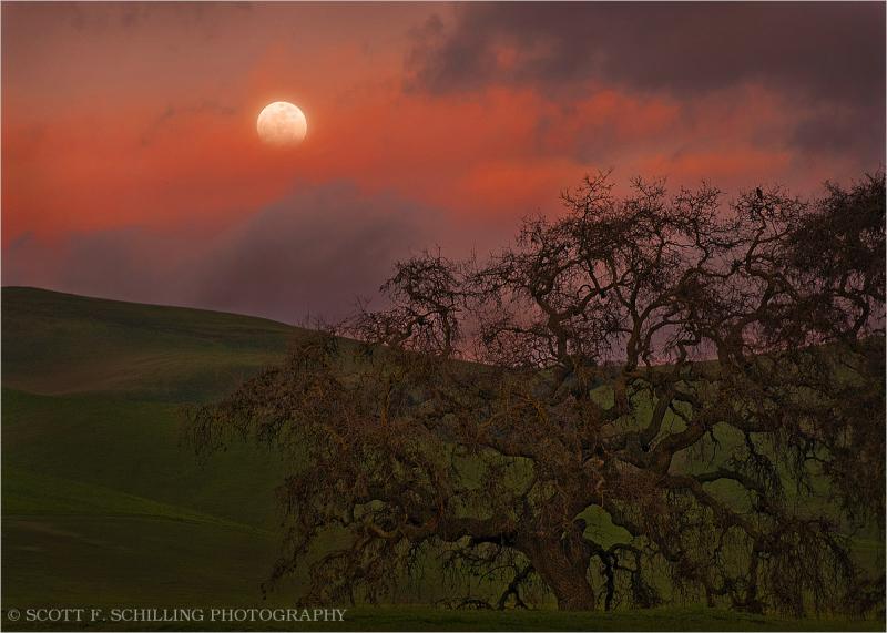 Moonrise along the Diablo Range