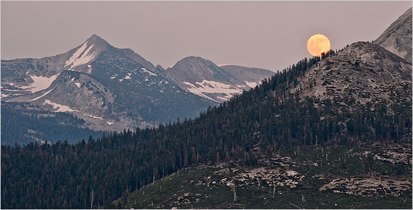 Moon Rise - Yosemite National Park