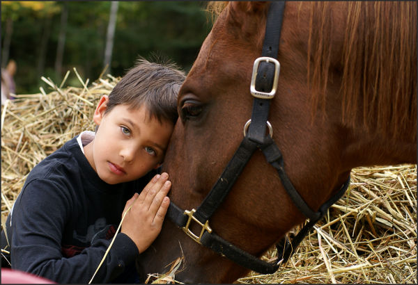 boy and his horse