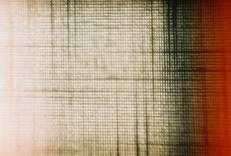 texture macro zenit