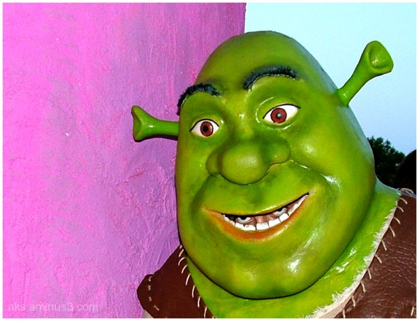 Shrek four eye