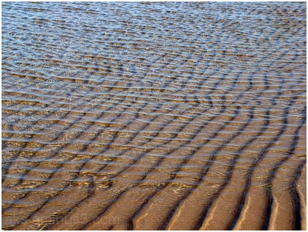 Beach and sea 3