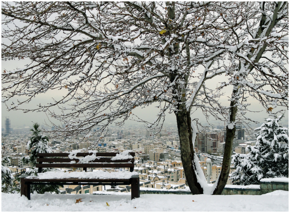 A snowy day 4