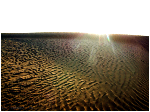 Desert sun