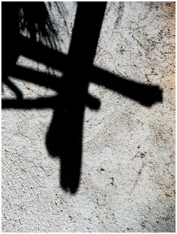 Shadows of life