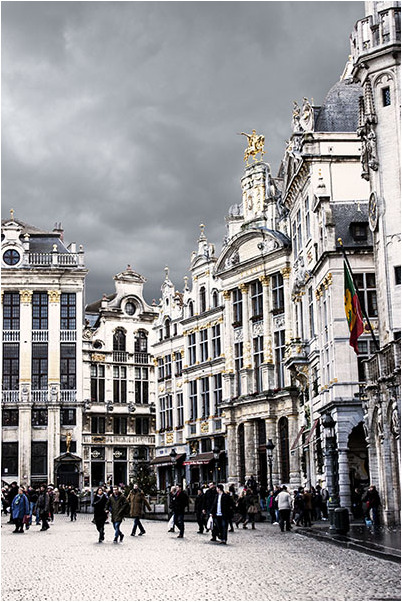 Grey Brussel