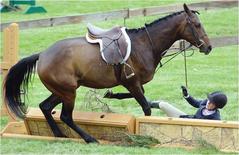 Horse fall