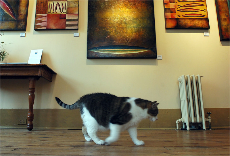 cat fish art show bill roberts photo
