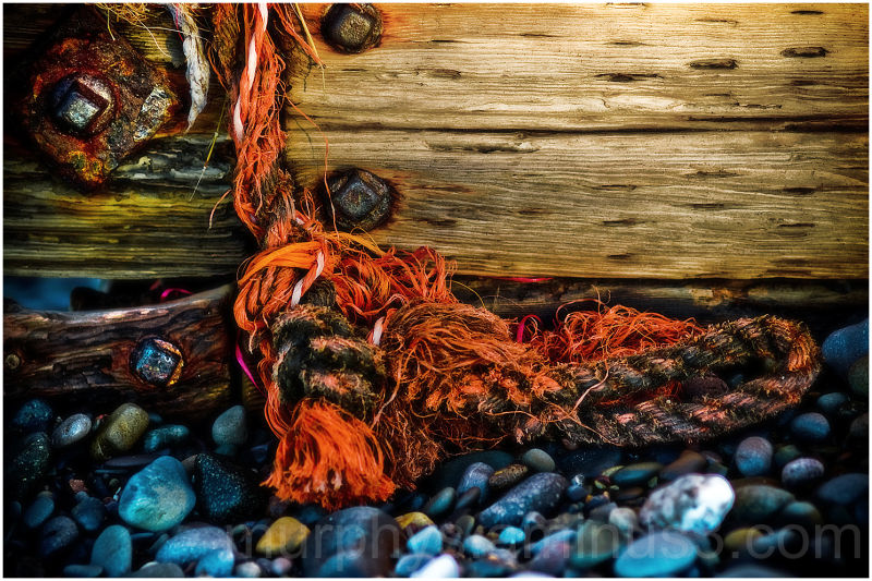 Beach.Rope. Wood.