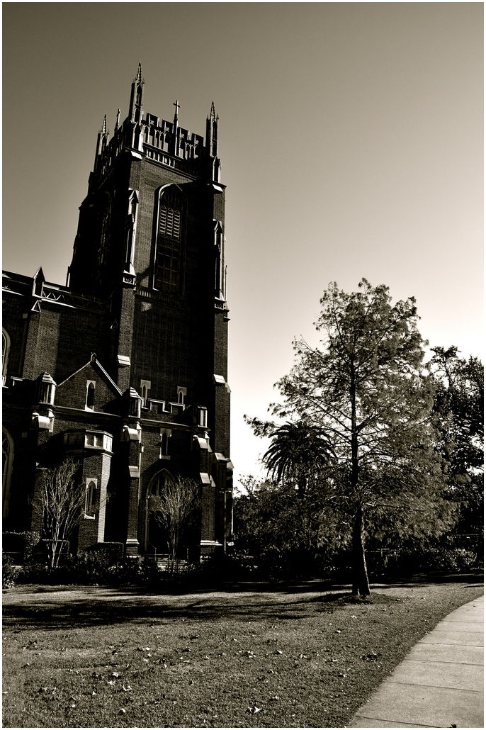 A church and a tree.
