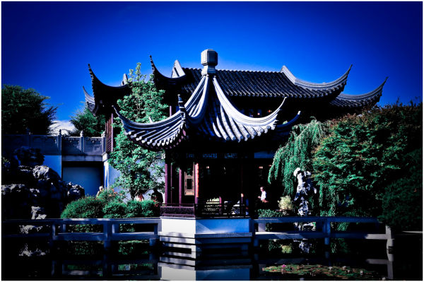 The Chinese Garden in Portland