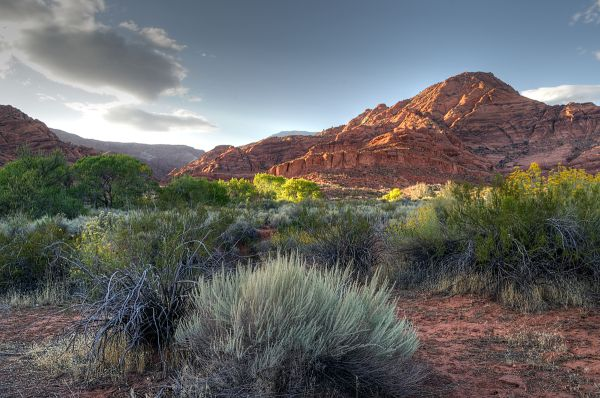 Red Cliffs Recreation Area (2/2)
