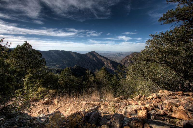 Rising Trails