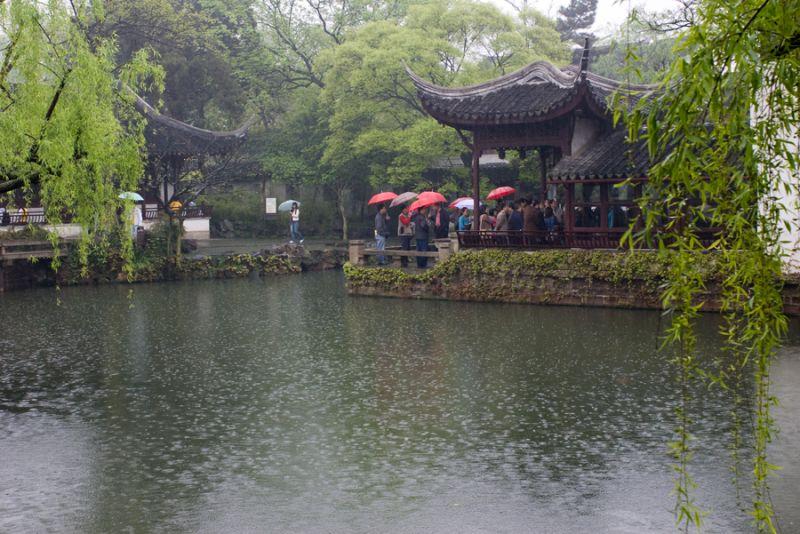 Spring Rain 2