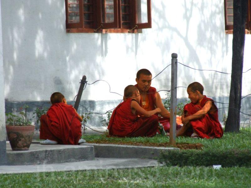 Buddhist teaching