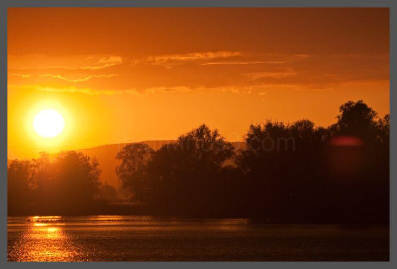 Sunset over the Rhein