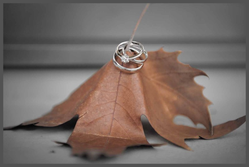 Rings on leaf