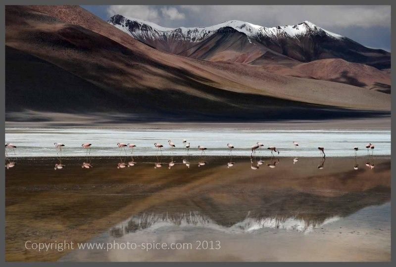 South America 2013