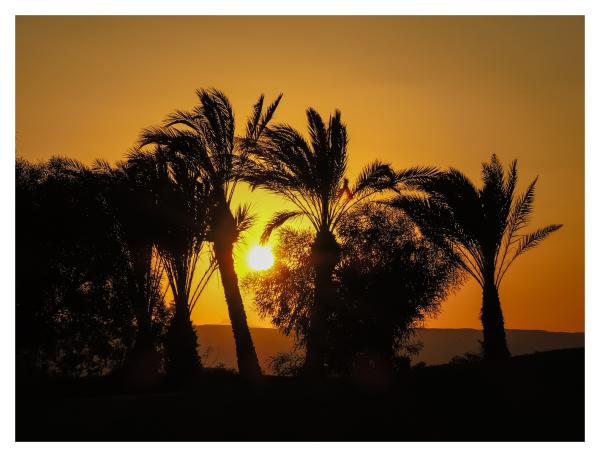 El Gouna - Egypt