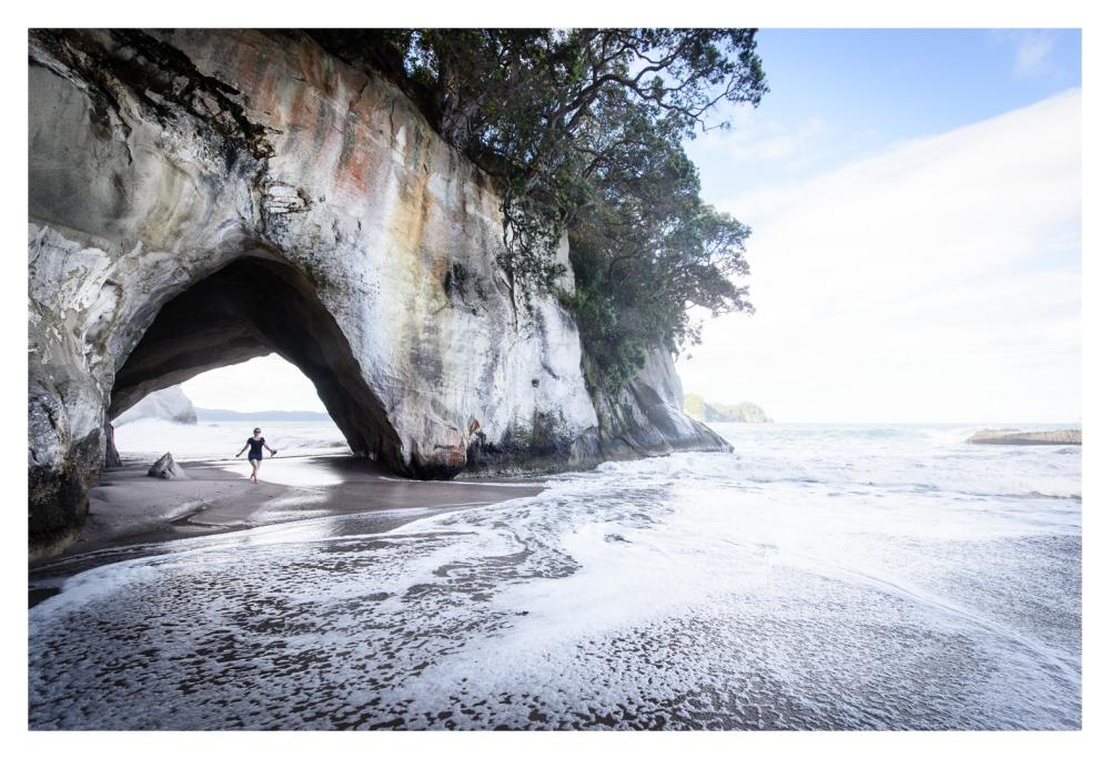 NZ Arches