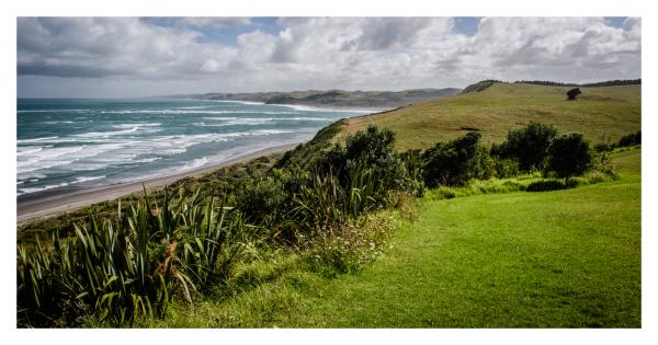 NZ 2016