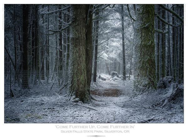 Narnia Winter