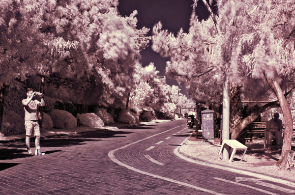 Infrared with Nikon D50